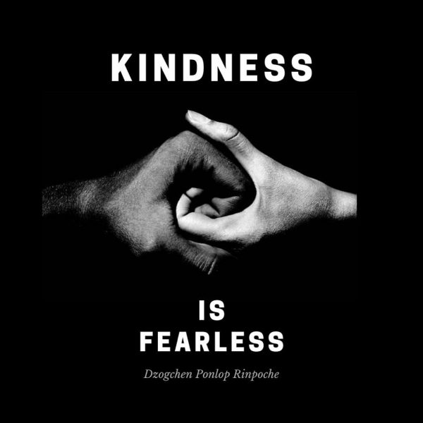 kindess-is-fearless-1024x1024